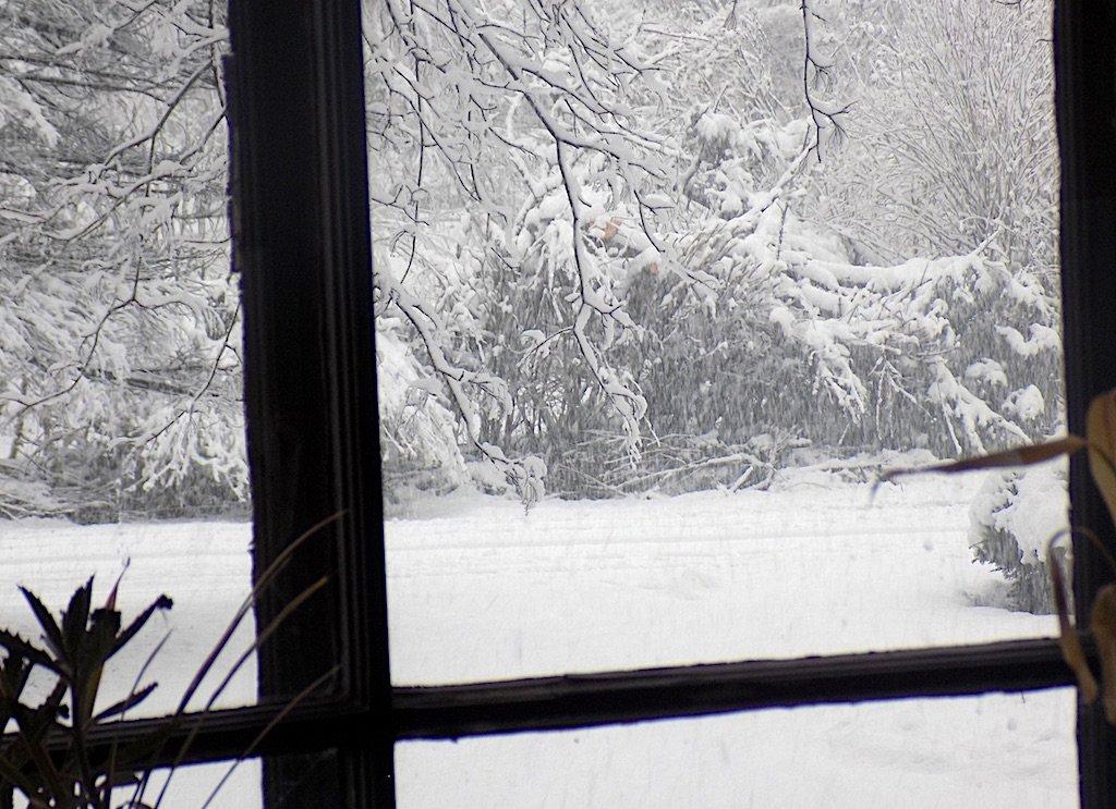 Snowtime - Puff Twist with Mascarpone Cream